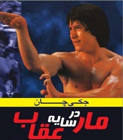 دانلود فیلم رزمی مار در سایه عقاب دوبله فارسی از جکی چان